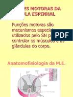 Aula_09_-_Funções_Motoras_da_Medula