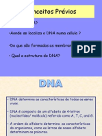 Aula1 DNAisolation&Eletroforese-2007