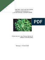 176cadena Del Cultivo y Mercado Okra