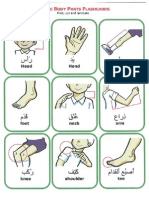 2Arabic Body Parts