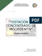 77843404-informe-N-¦3-tostacion-de-molibdenita