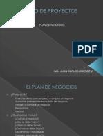 DISEÑO DE PROYECTOS Plan de Negocios