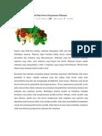 Teknologi Nanokomposit Pada Proses Pengemasan Makanan