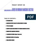 Emerging issues in indian banking sector
