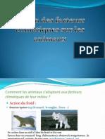 Action Des Facteurs Climatiques Sur Les Animaux