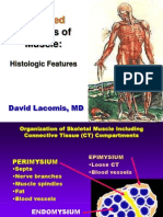 DiseasesMuscleAcquired1.ppt