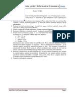Proiect Informatica Economica