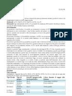 Relazione n 11