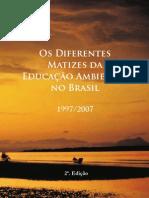 Os Diferentes Matizes Da EA No Brasil