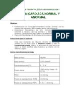 13 - SEMINARIO DE FISIOPATOLOGÍA CARDIOVASCULAR