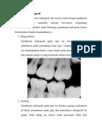 Gambaran Radiografi