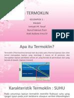 TERMOKLIN.pptx