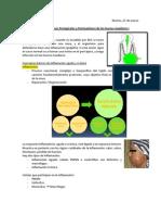 Clase 3 - Procesos Infecciosos de Los Huesos Maxilares I