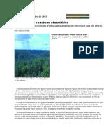 A Amazônia e o carbono atmosférico