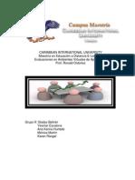 CARIBBEAN INTERNATIONAL UNIVERSITY Evaluacion de Desempeño. Grupo 9
