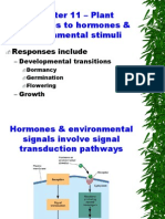Phytohormones and their functions