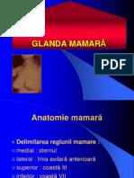 22 San (Anomalii, Infectii, Tumori Benigne)