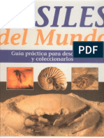 Fosiles del Mundo