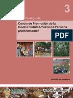 3-Plan de Negocios PromAmazonia - 28-11-07