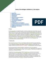 Auditoría interna enfoque sistémico