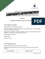 actividades antropometricas