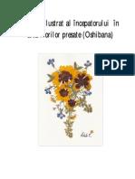 Ghidul-ilustrat-al-începatorului-în-arta-florilor-presate