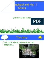 17 Sheep
