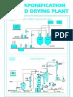 +Sapo & Drying Plant
