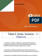 Clase 04 Acidos Nucleicos