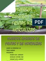 EXPOSICIÓN DE HUERTOS CASEROS