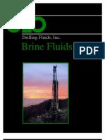 Brine Fluids - Geo DF