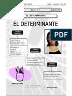 5TO AÑO - LENGUAJE - GUIA Nº7 - EL DETERMINANTE