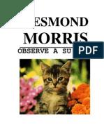 Desmond Morris Oserve Su Gato