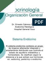 Endocrinología Introducción 2008