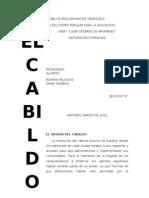 El Cabildo[1]. Word 2003