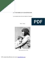 El Informe de Schapenham.pdf