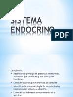 Sistema Endocrino 1h