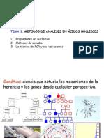 Metodos Estudio Acid Nucleicos