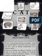 cat-111116135217-phpapp01