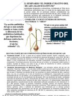 El Ajo 002.pdf