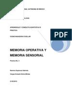 Memoria Operativa Final