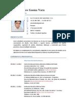CV Arturo Gaona 2013-2