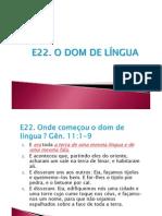 E22 - Dom de Linguas