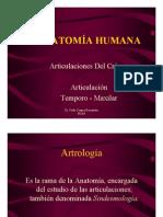Anatomía - Articulaciones Del Cráneo