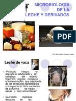 Microbiología de la leche y productos derivados (2)