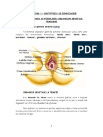 Anatomia Si Fiziologia Organelor Genitale Feminine 1