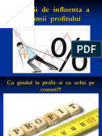 Factorii de Influenta a Marimii Profitului