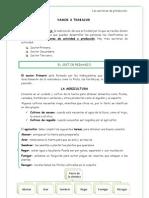 Unidad 10                                        EL SECTOR PRIMARIO.docx