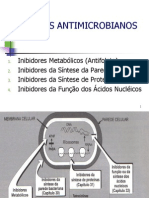Terapia Antimicrobiana Net