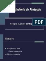 Periodonto de proteção graduação